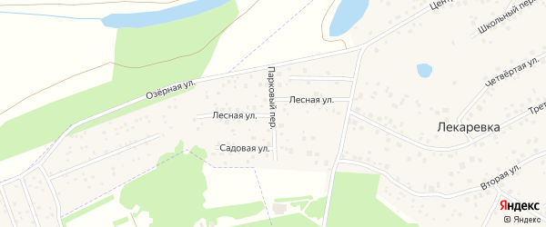 Парковый переулок на карте деревни Лекаревки с номерами домов