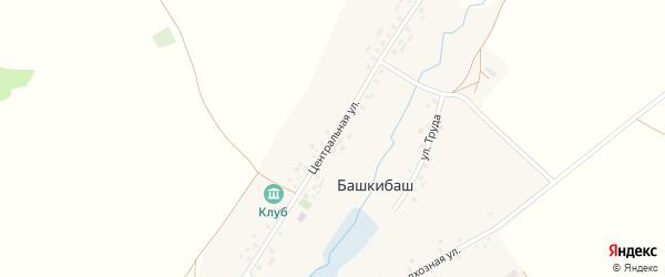 Центральная улица на карте села Башкибаша с номерами домов