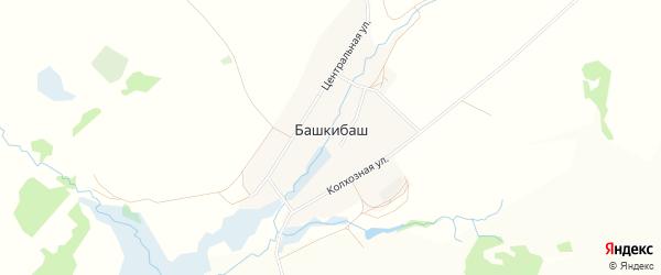 Карта села Башкибаша в Башкортостане с улицами и номерами домов