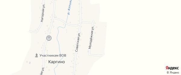 Молодежная улица на карте деревни Каргино с номерами домов