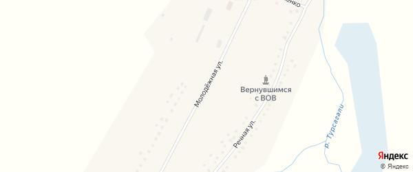 Молодежная улица на карте села Степановки с номерами домов