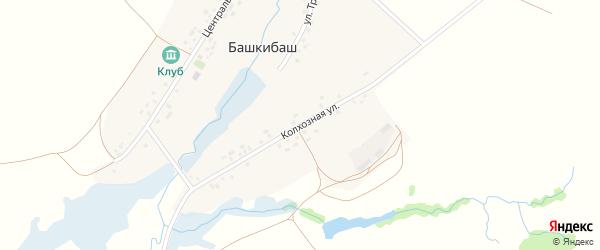 Колхозная улица на карте села Башкибаша с номерами домов