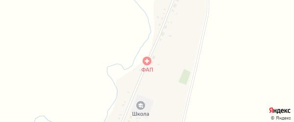 Центральная улица на карте деревни Петропавловки с номерами домов