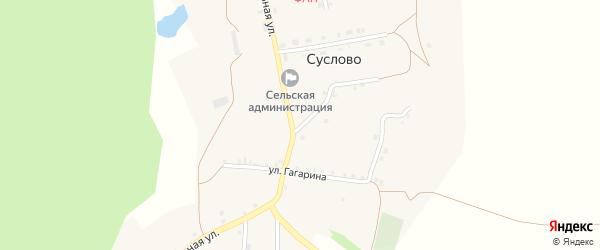 Улица Гагарина на карте села Суслово с номерами домов