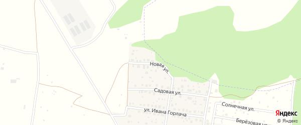 Новая улица на карте деревни Николаевки с номерами домов