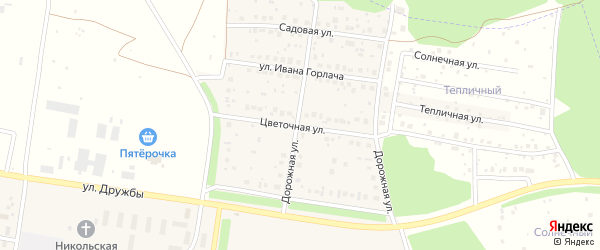 Цветочная улица на карте деревни Николаевки с номерами домов
