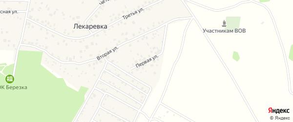 Первая улица на карте деревни Лекаревки с номерами домов