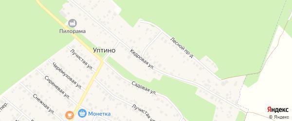 Кедровая улица на карте деревни Уптино с номерами домов