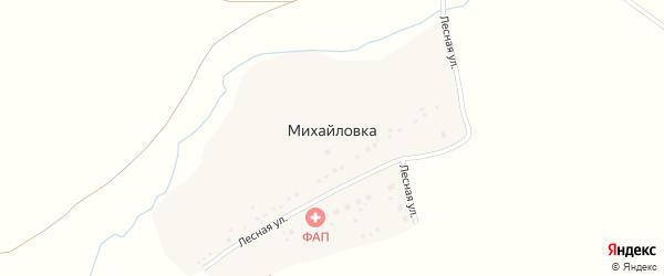 Лесная улица на карте деревни Михайловки с номерами домов