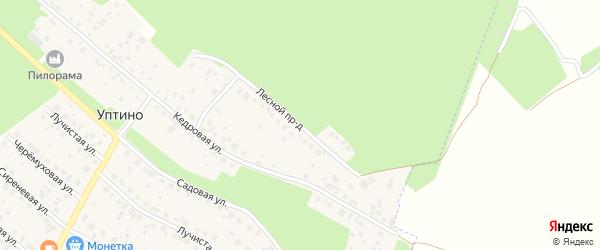 Лесной проезд на карте деревни Уптино с номерами домов