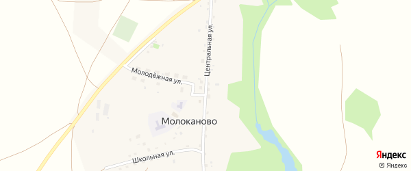 Центральная улица на карте села Молоканово с номерами домов