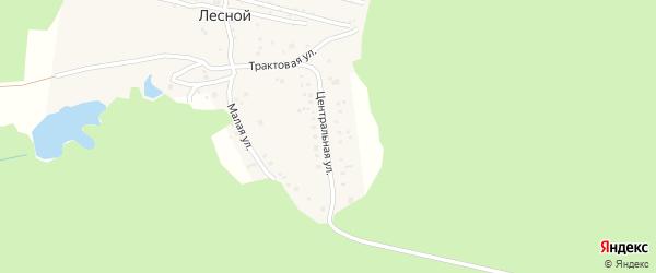 Центральная улица на карте деревни Лесного с номерами домов
