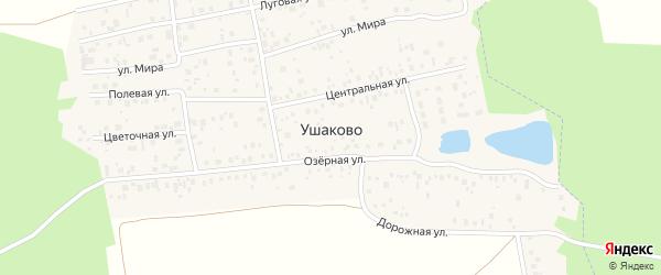 Ягодная улица на карте деревни Ушаково с номерами домов