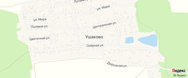 Центральная улица на карте деревни Ушаково с номерами домов