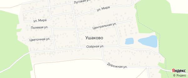 Дорожная улица на карте деревни Ушаково с номерами домов