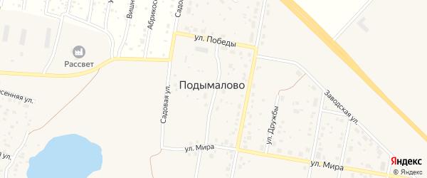 Новая улица на карте деревни Подымалово с номерами домов