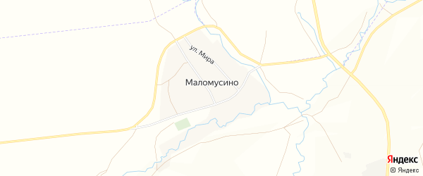 Карта деревни Маломусино в Башкортостане с улицами и номерами домов