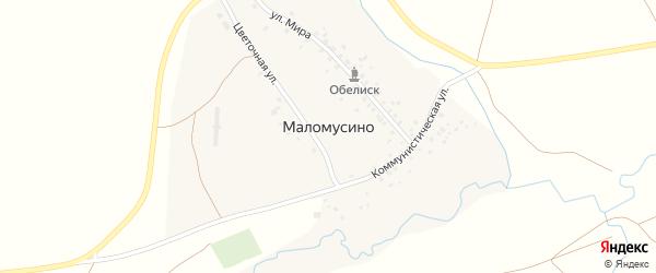 Улица Мира на карте деревни Маломусино с номерами домов