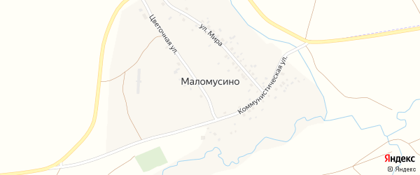 Цветочная улица на карте деревни Маломусино с номерами домов