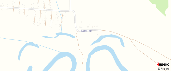 Лесная улица на карте деревни Кипчака с номерами домов