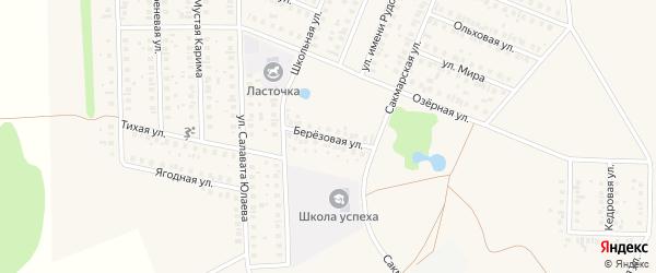 Березовая улица на карте села Жуково с номерами домов