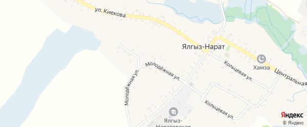 Молодежная улица на карте села Ялгыза-Нарата с номерами домов