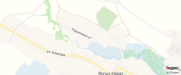 Родниковая улица на карте села Ялгыза-Нарата с номерами домов