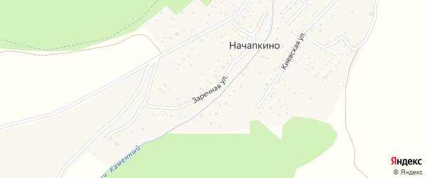 Заречная улица на карте деревни Начапкино с номерами домов
