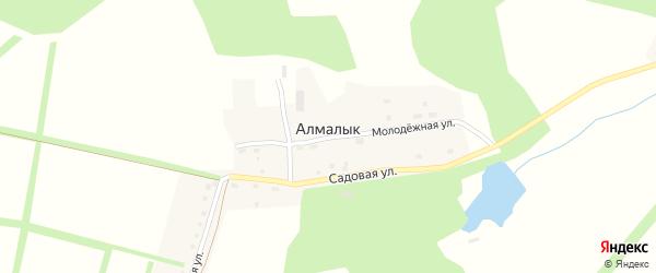 Молодежная улица на карте деревни Алмалыка с номерами домов