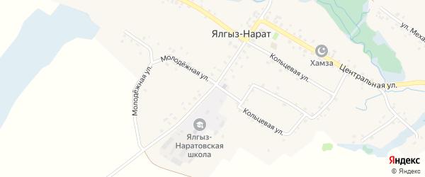 Школьная улица на карте села Ялгыза-Нарата с номерами домов