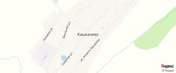 Заречная улица на карте деревни Кашкалево с номерами домов