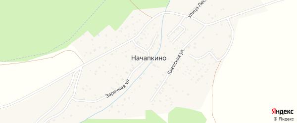Садовая улица на карте деревни Начапкино с номерами домов