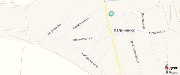 Кольцевая улица на карте села Калинники с номерами домов