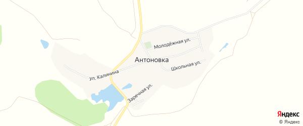 Карта деревни Антоновки в Башкортостане с улицами и номерами домов