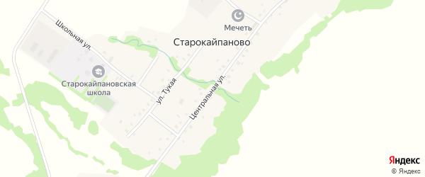 Центральная улица на карте села Старокайпаново с номерами домов