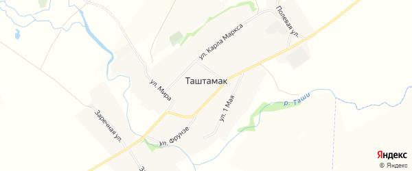 Карта деревни Таштамака в Башкортостане с улицами и номерами домов
