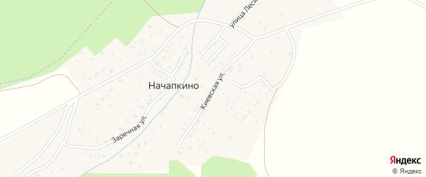 Киевская улица на карте деревни Начапкино с номерами домов