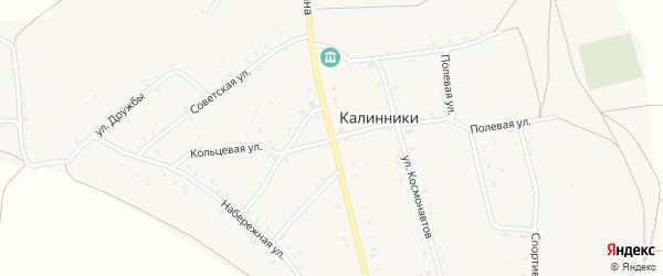 Улица Калинина на карте села Калинники с номерами домов