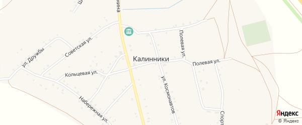 Комсомольская улица на карте села Калинники с номерами домов