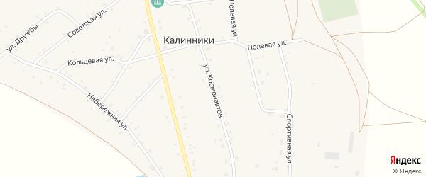 Улица Космонавтов на карте села Калинники с номерами домов