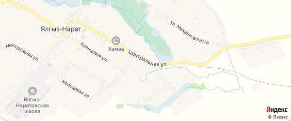 Центральная улица на карте села Ялгыза-Нарата с номерами домов