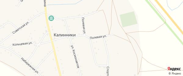 Полевая улица на карте села Калинники с номерами домов