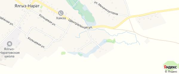 Намурная улица на карте села Ялгыза-Нарата с номерами домов