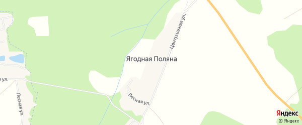 Карта деревни Ягодной Поляны в Башкортостане с улицами и номерами домов