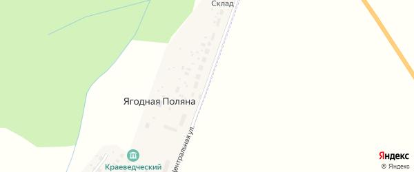 Центральная улица на карте деревни Ягодной Поляны с номерами домов