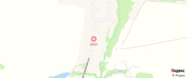 Центральная улица на карте села Арибашево с номерами домов