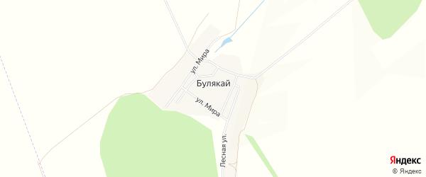 Карта деревни Булякая в Башкортостане с улицами и номерами домов