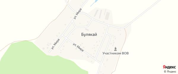 Лесная улица на карте деревни Булякая с номерами домов