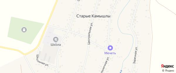 Центральная улица на карте села Старых Камышлы с номерами домов