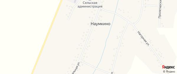 Центральная улица на карте деревни Наумкино с номерами домов